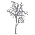 ApplePie Design Arbres Wall Decals Stickers
